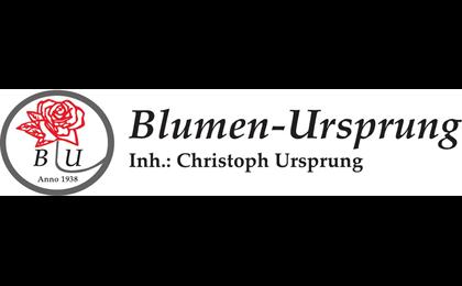 Logo der Firma Blumen Ursprung aus Frankfurt